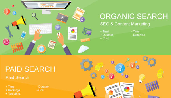 Paid Search vs Organic Search Small Business SEO